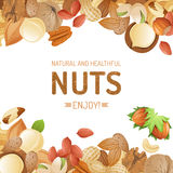 Background with nuts Royalty Free Stock Photo