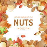 Background with nuts Stock Photo