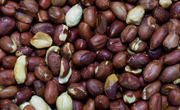 Background nuts peanuts. Close up shot Royalty Free Stock Photo