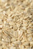 Background of oatmeal Royalty Free Stock Photo