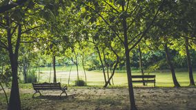 Free Background Of City Park In Spring With Trees, Bushes And Bench.island  And The Lake Stock Photo - 160110890