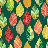 Background Of Leaves. Royalty Free Stock Photography