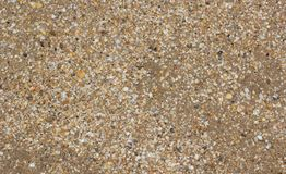 Free Background Of Sea Sand And Shells. Royalty Free Stock Photo - 110467415