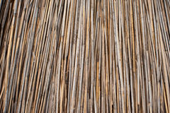Free Background Of Thatched Roof, Dry Grass Or Hay. Texture Of Dried Grass Royalty Free Stock Image - 92169766