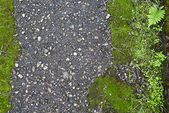 Background from old asphalt Stock Photo