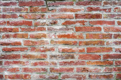 Background old brick wall. Vintage grunge texture Royalty Free Stock Photos
