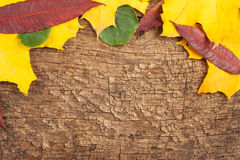 Background of old cracked wood Royalty Free Stock Photography