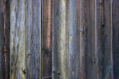 Background - old dark vertical wood board Stock Images