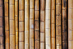 Background of old and dry bamboo fence Royalty Free Stock Image