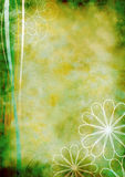 Background-old-floral-grunge-green Stock Photos
