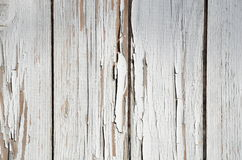 Background of the old gray boards. Background of the planed boards with paint peeling off the gray Royalty Free Stock Image