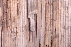 Background of old grunge wooden surface macro Royalty Free Stock Images