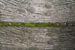 Background old lumber floor in garden. Design Royalty Free Stock Photography