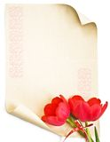 Background with old paper and tulip Stock Images