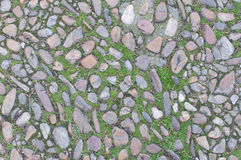 Background old real texture with stones and some grass. A photo of a real old background texture with stones and some grass Royalty Free Stock Image