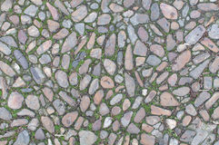 Background old real texture with stones and some grass. A photo of a real old background texture with stones and some grass Stock Image