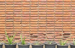 Background of old red brick wall Stock Photo