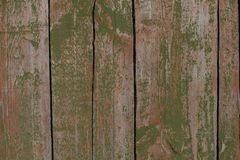 Background. Old rustic gate to a shed with peeling green paint. royalty free stock photography