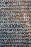 Background of old vintage brick wall. Background texture of old vintage brick wall Royalty Free Stock Photos