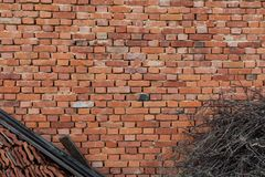 Background of old vintage orange brick wall with dry branches and roof tiles. Construction material Royalty Free Stock Image