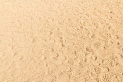 Background old wood brown taxture. Background sand beach taxture sandy Stock Photos