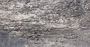 The background of old wood and straw. Texture background of gray. Wood and dry twigr royalty free stock photo