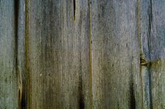 Background of old wooden boards, concept of natural textures in the wild, copy space, stock image