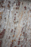 Background. Old wooden background, close up Royalty Free Stock Photo