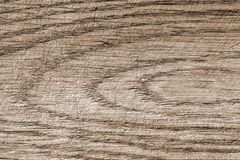 Textured surface of old oak board stock image