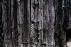 Background from old worn darkened from time to time gray knotty vertical wooden plank close up.  royalty free stock photos