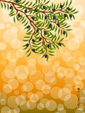 Background with a olive branch Stock Image