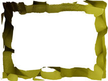 Background Olive Texture Stock Image