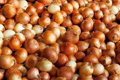 Background of onions Stock Photo