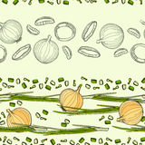 Background of onions Stock Images