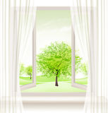 Background with an open window and green trees. Royalty Free Stock Images