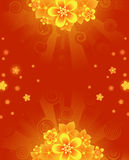 Background with orange flowers. Glowing red, summer background with orange with bright colors Royalty Free Stock Photos