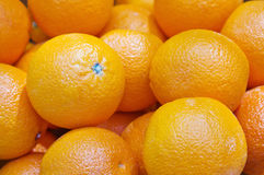 Background of orange fruit Stock Photography