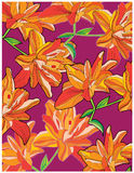 Background with orange lilies on a red background Stock Photography