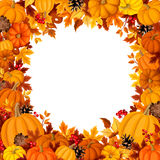 Background with orange pumpkins and autumn leaves. Vector illustration. Stock Image