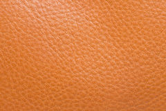 Background of the orange skin. Stock Images