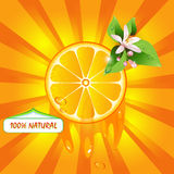Background with orange slice. And flower stock illustration