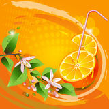 Background with orange slices Royalty Free Stock Images