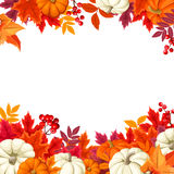 Background with orange and white pumpkins and colorful autumn leaves. Vector illustration. Vector background frame with orange and white pumpkins and colorful Royalty Free Stock Image