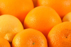 Background from oranges Royalty Free Stock Photo