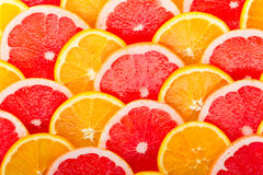Background from the oranges and grapefruits Royalty Free Stock Image
