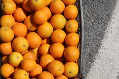 Oranges in a crate for design background. stock photos