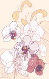 Background with orchids Stock Images