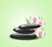 Background with orchids and spa stones Stock Photo