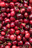 Background of Organic Cherries Stock Image