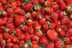 Background from organic  strawberry. Royalty Free Stock Images